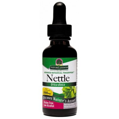 Nettle Leaf  - LA